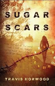 Sugar Scars by Travis Norwood (Booktrope, 2015)
